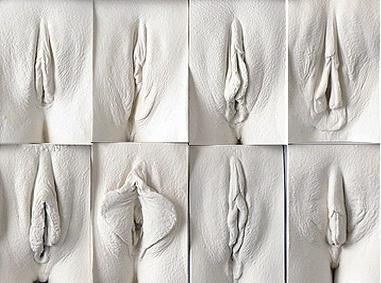 Фото вагины из чего она состоит — img 15
